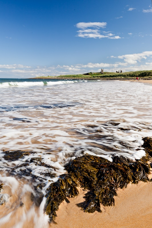 Photograph of tide rushing in over seaweed on Embleton bay with Dunstanburgh Castle in the background against blue empty sky.